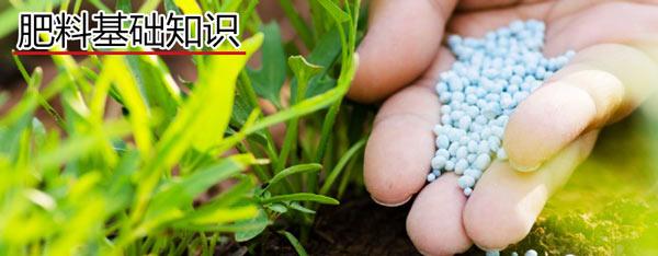 肥料实用知识