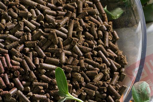茶籽粕 茶颗粒